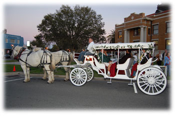 Citrus County Carriage Riding